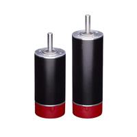 RPX32: 32 mm Brushless DC Motor
